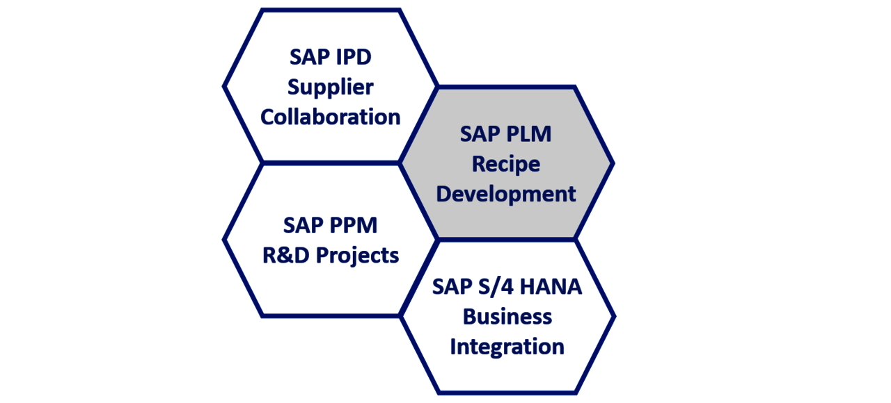 SAP PLM Grafik